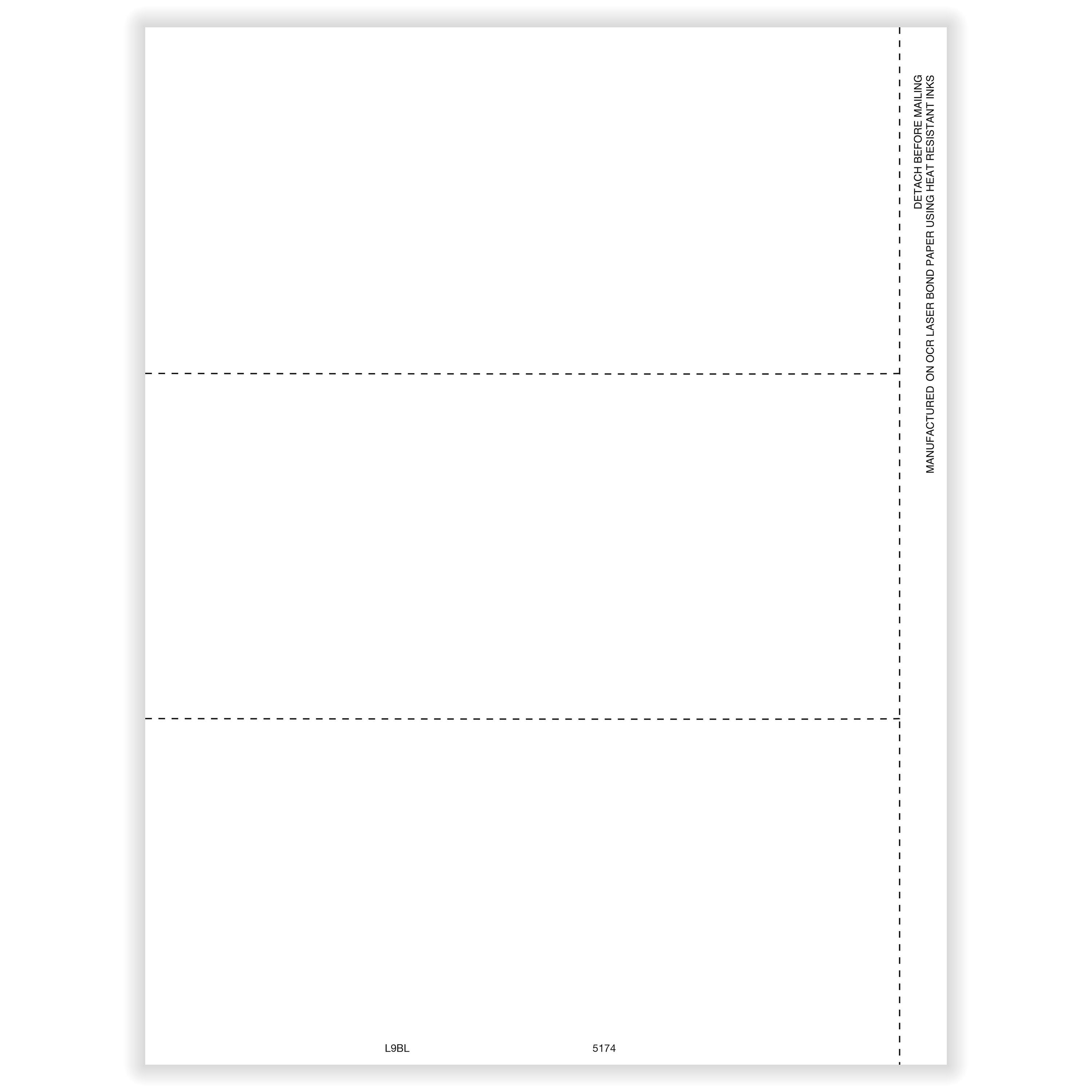 Picture of 1099/W-2 Blank  Face - Horizontal